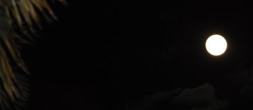 Moon Novembre 2016.jpg