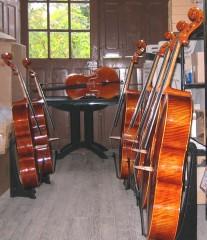 secteur pastoral du kercorb,il était une fois chalabre,laetitia véry,violoncelliste