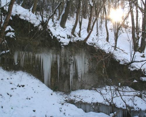 Neige 5 février 2012 019.jpg