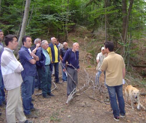 Charte forestière.jpg