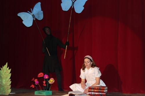 alice et le cirque merveilleux