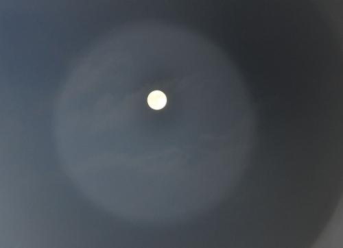 Lune 14 novembre 2016 003.JPG