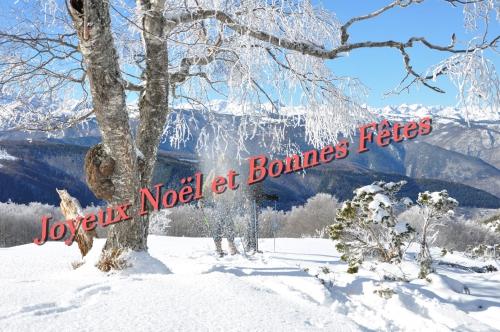 Card Noël 2016 bis.jpg