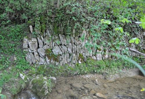 Ruisseau Limoux 008.JPG