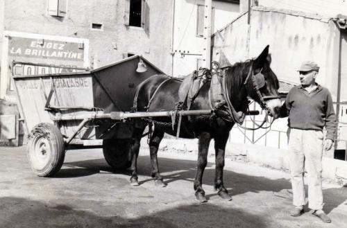 1960 Pedro Sancho et La mûle.jpg