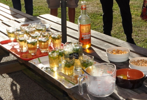 cyclo-vtt-club du chalabrais,roseraie de talnay
