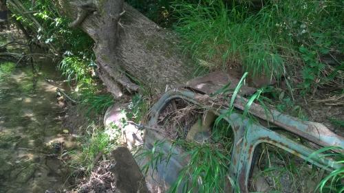 2020 17 juillet Carcasse Hers Sonnac 003.jpg
