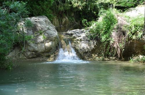 Ruisseau Limoux 009.JPG