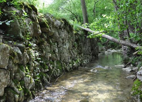 Ruisseau Limoux 005.JPG