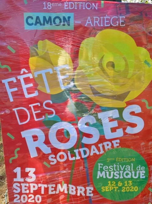 2020 Camon roses.jpg