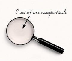 nanotechnologies,laroque d'olmes,le silence des nanos