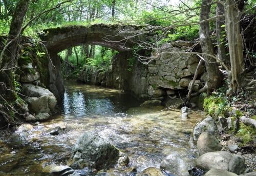 Ruisseau Limoux 001.JPG