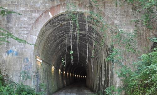 Tunnel de Falgas.jpg
