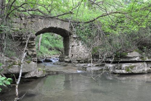 Ruisseau Limoux 004.JPG